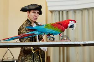 выступление попугаев Ара