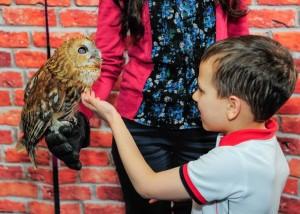 контактный зоопарк Харьков