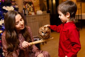 в мире животных  детский праздник