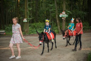 лошади на праздник
