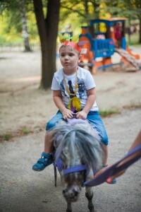 лошадки на праздник