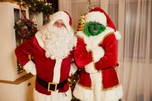 Гринч и Санта на детский праздник